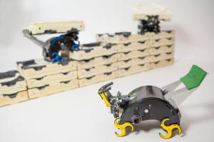 תמונת רובוטי ה-Termes מתוך אתר אוניברסיטת הרווארד
