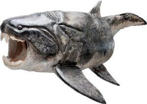 דג ה-placoderm